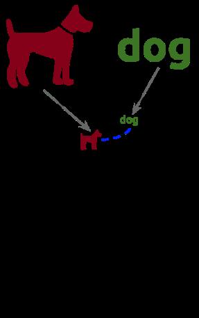Dual Coding Image